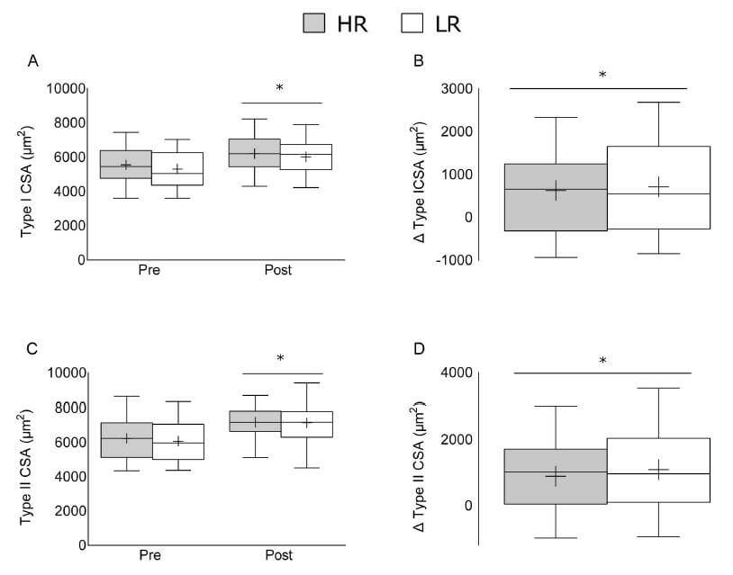 Similar changes in type I and type II fiber CSA after high load and low load training.