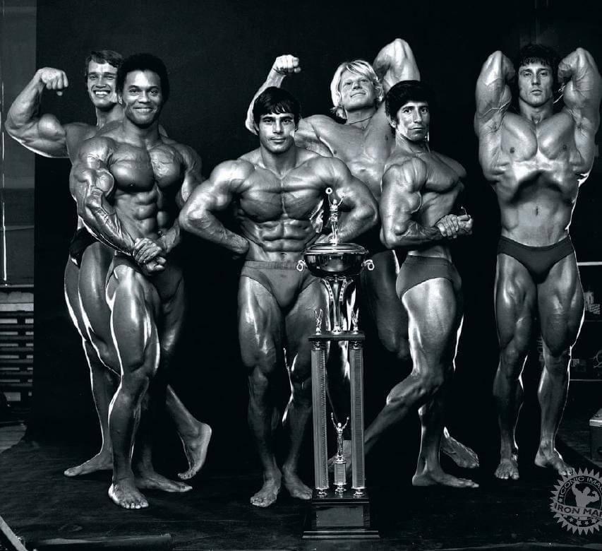 muscle fiber type