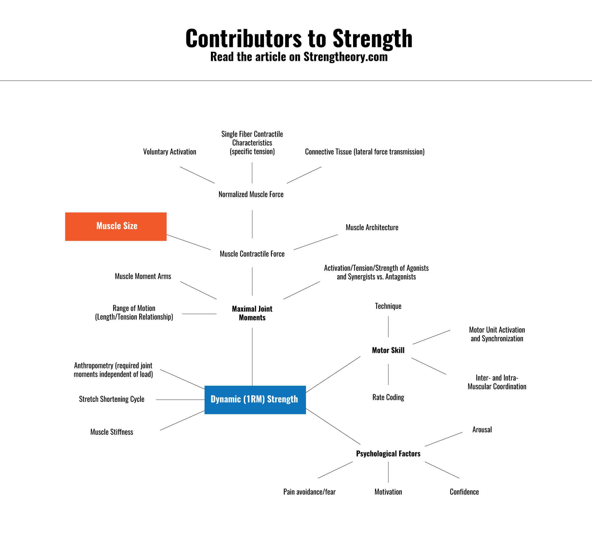 strength-chart