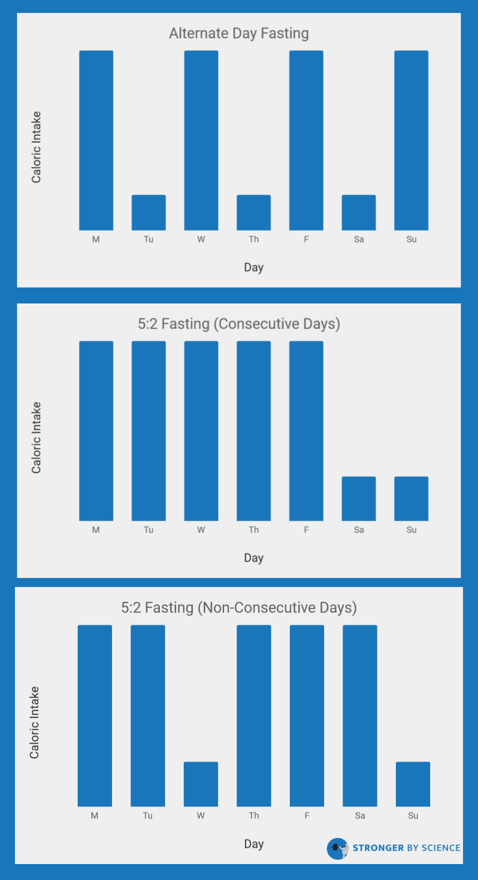 Popular intermittent energy restriction protocols