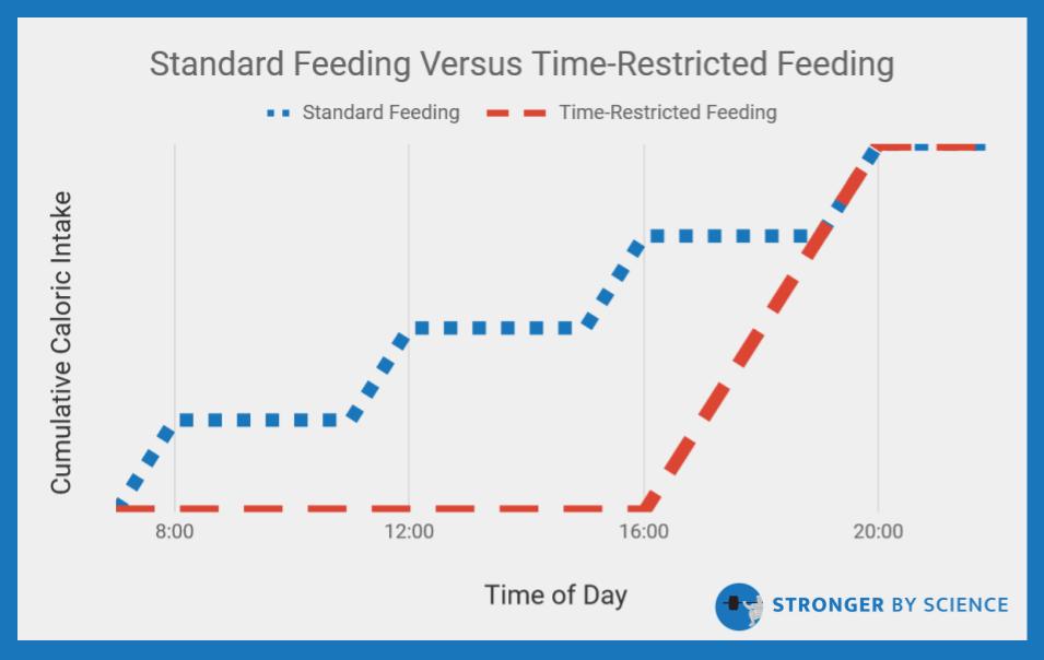 standard feeding vs time restricted feeding