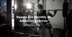 adductors in the squat