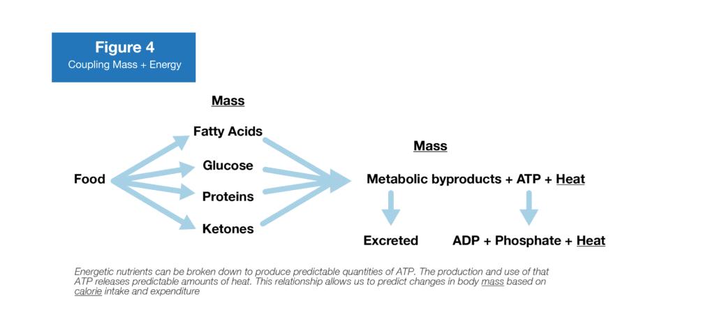 calories and energy balance figure 4