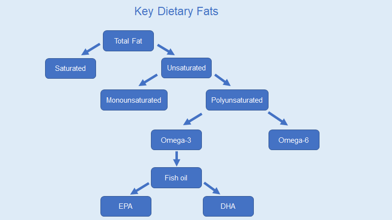 key dietary fats